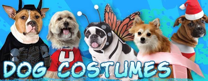 Costume Craze coupon codes